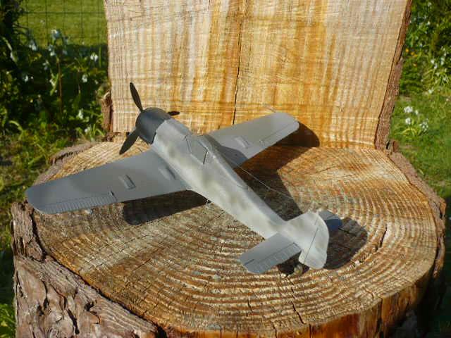Fw 190 A8/R8 Obst Walter Dahl P1160178