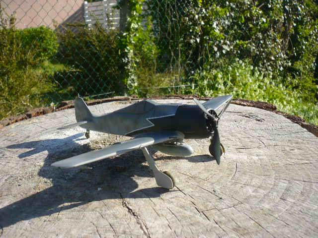 Fw 190 A8/R8 Obst Walter Dahl P1160180