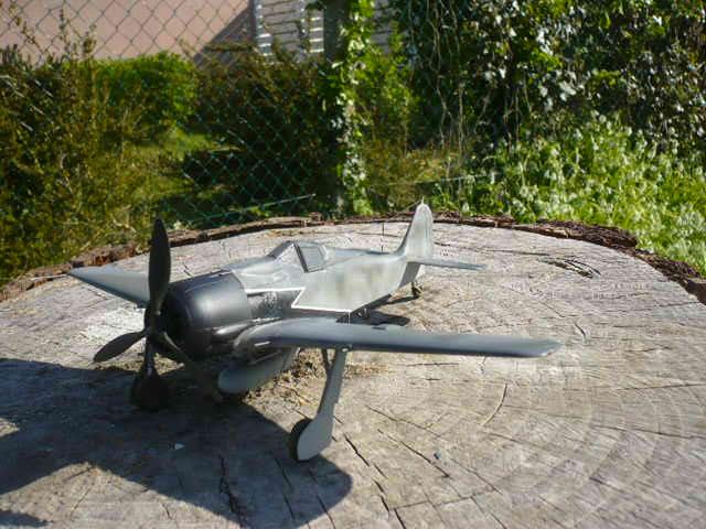 Fw 190 A8/R8 Obst Walter Dahl P1160181