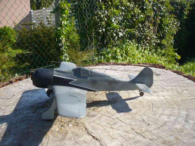 Fw 190 A8/R8 Obst Walter Dahl P1160182