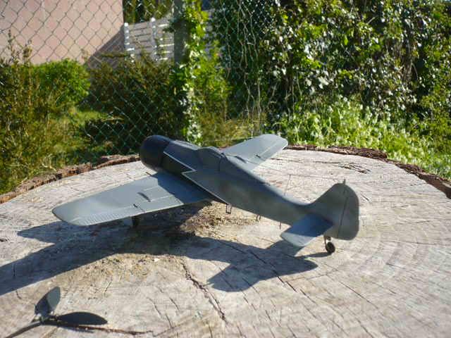 Fw 190 A8/R8 Obst Walter Dahl P1160210