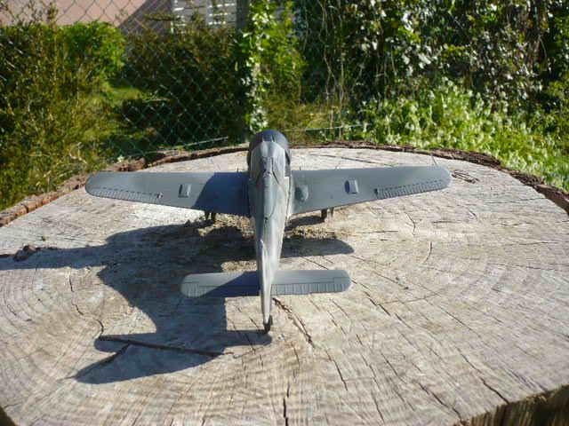 Fw 190 A8/R8 Obst Walter Dahl P1160211