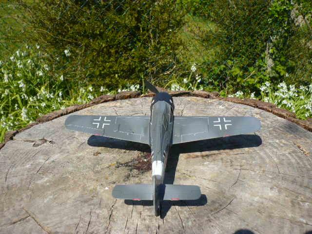 Fw 190 A8/R8 Obst Walter Dahl P1160216