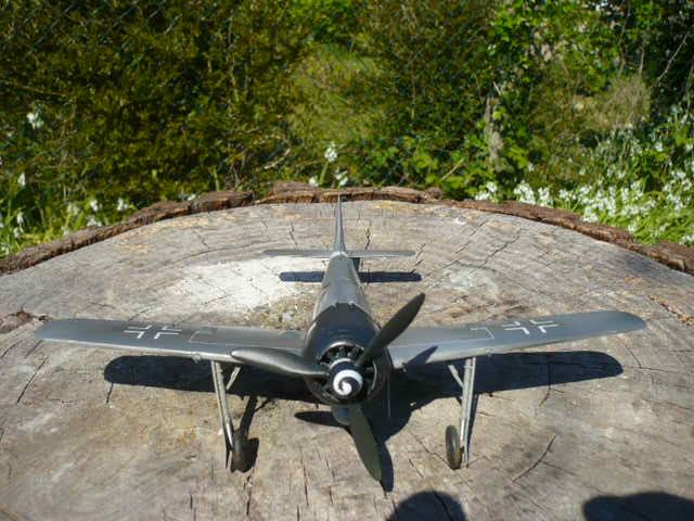 Fw 190 A8/R8 Obst Walter Dahl P1160219