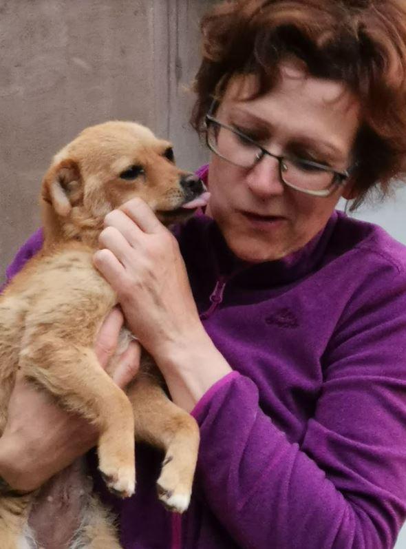 LINA- Jolie femelle croisée de taille mini (5 kg), née en mai 2018 - REMEMBER ME LAND - Adoptée par Régine (67)  Lina13