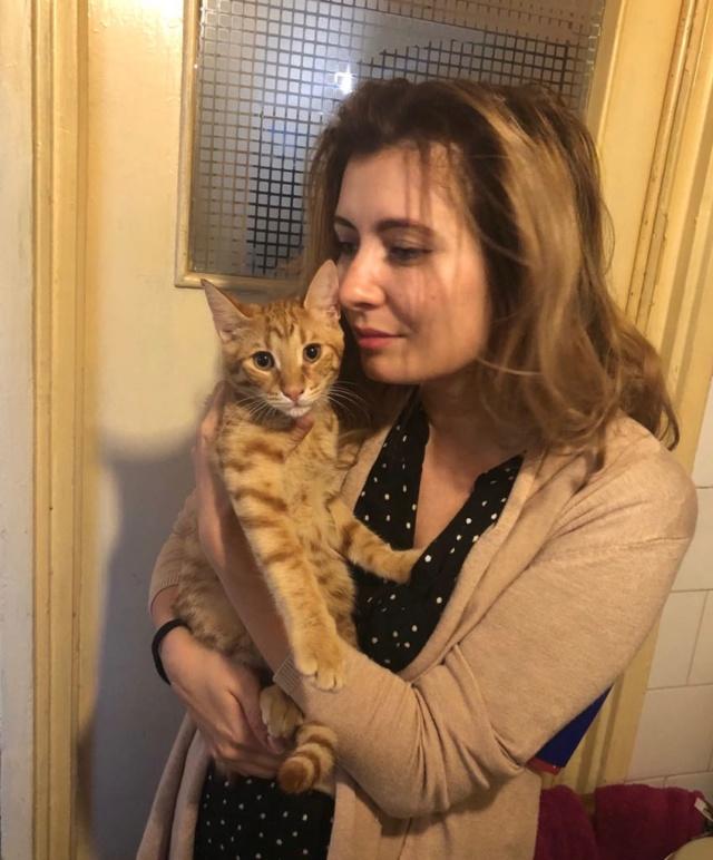 DRAGOMIR (ex MR LOUIS) - magnifique chat mâle léopard, né fin mai 2018 (BUCAREST) - EN FA chez Abysse (92) - ADOPTE PAR CYRIL (92) Louis210