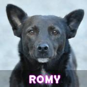 Les adultes de petite taille en Roumanie en un clin d'oeil Romy11