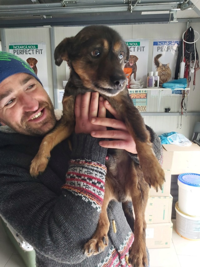 PTITLOUP (ex TIGANU) - Mâle, croisé de petite taille - né environ en novembre 2011 - Adopté par Gilles (69)  Tiganu49