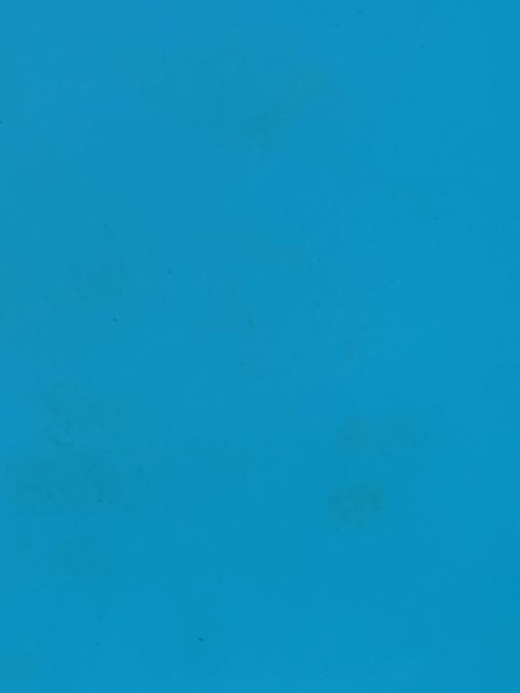 legere marbrures vertes - liner Img_2510