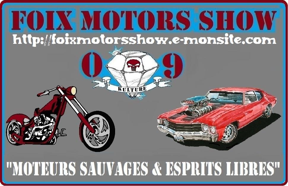 Rassemblement mensuel FOIX 09 ! FOIX motors show - Page 2 Bache-11