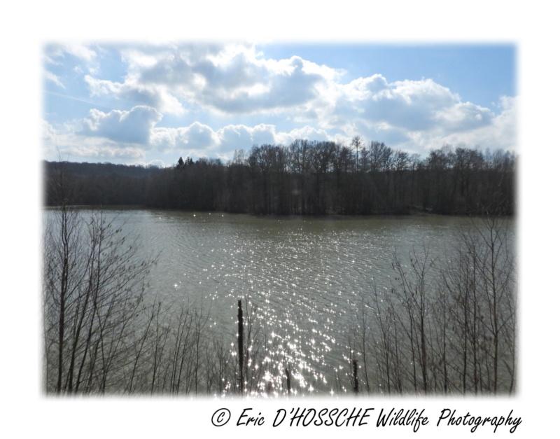 Le Lac du Ry Jaune Nikon_65