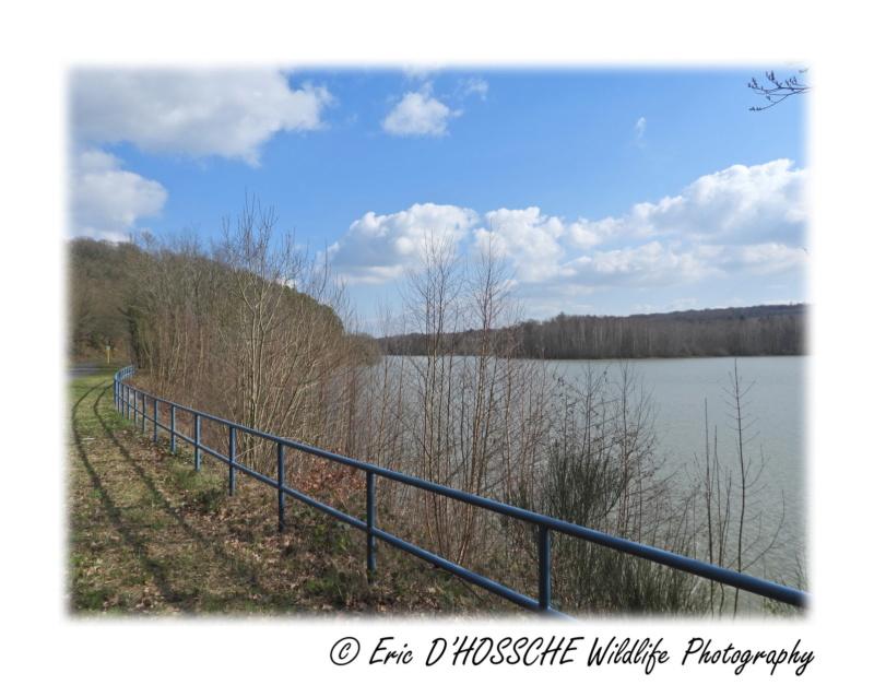 Le Lac du Ry Jaune Nikon_70