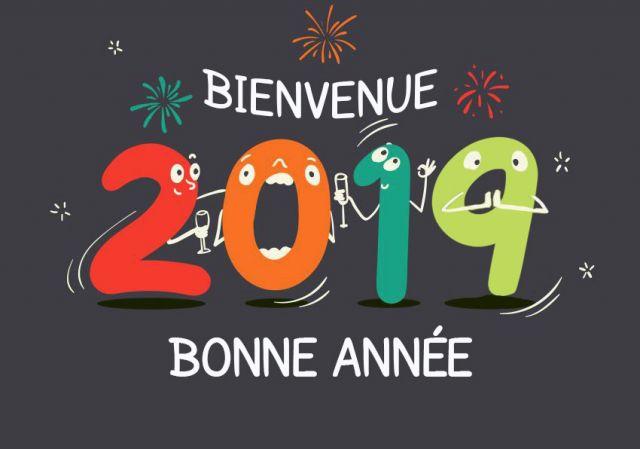 BONNE ANNEE 2019 Bienve10