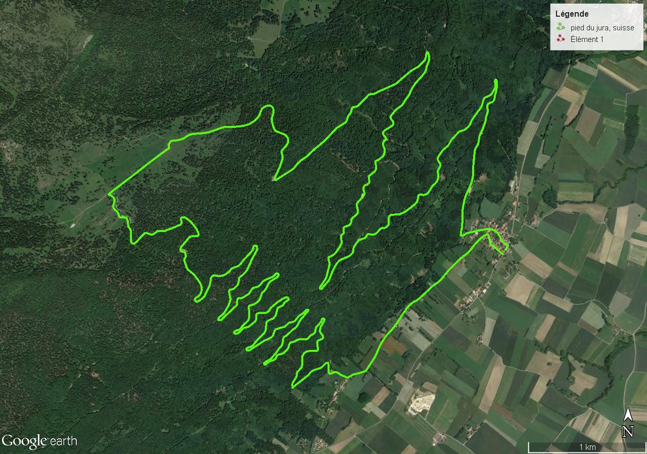 [résolu]Tracer un itinéraire, le sauver en KMZ [problème technique Google Earth] Pied_d10