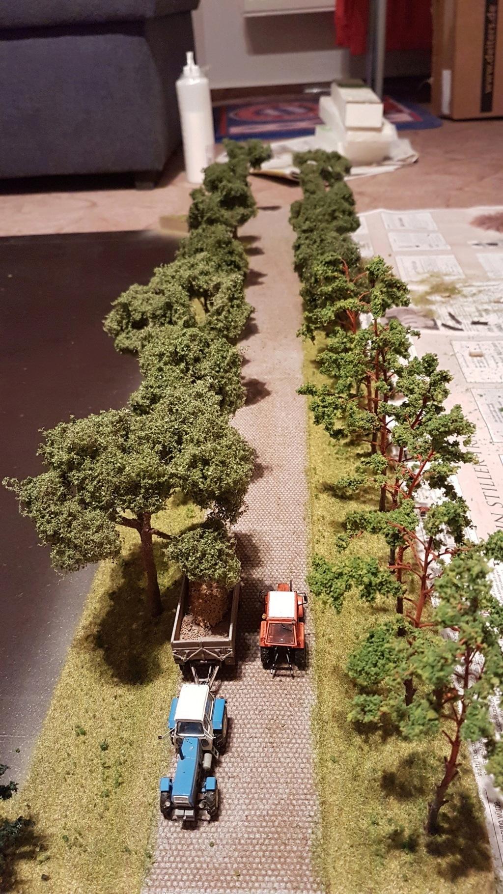 Bau von einem Wechseldio (DDR Landwirtschaft) D214