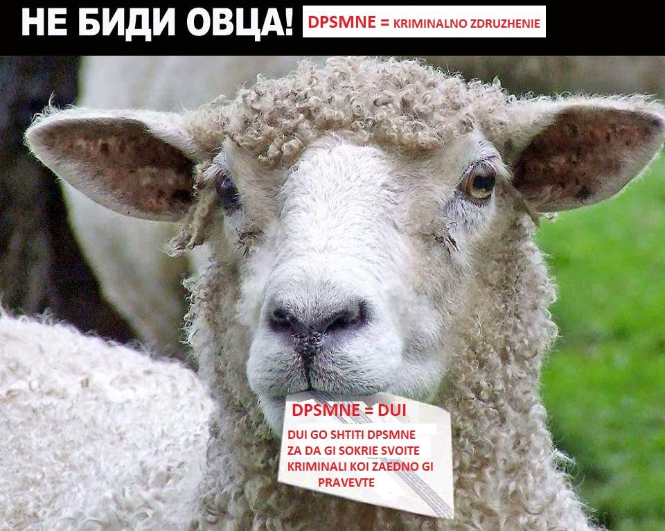 СДСМовци, ДУИевци и други Албанци, Амдиевци и други Роми и останати платеници - Page 7 Cxz10