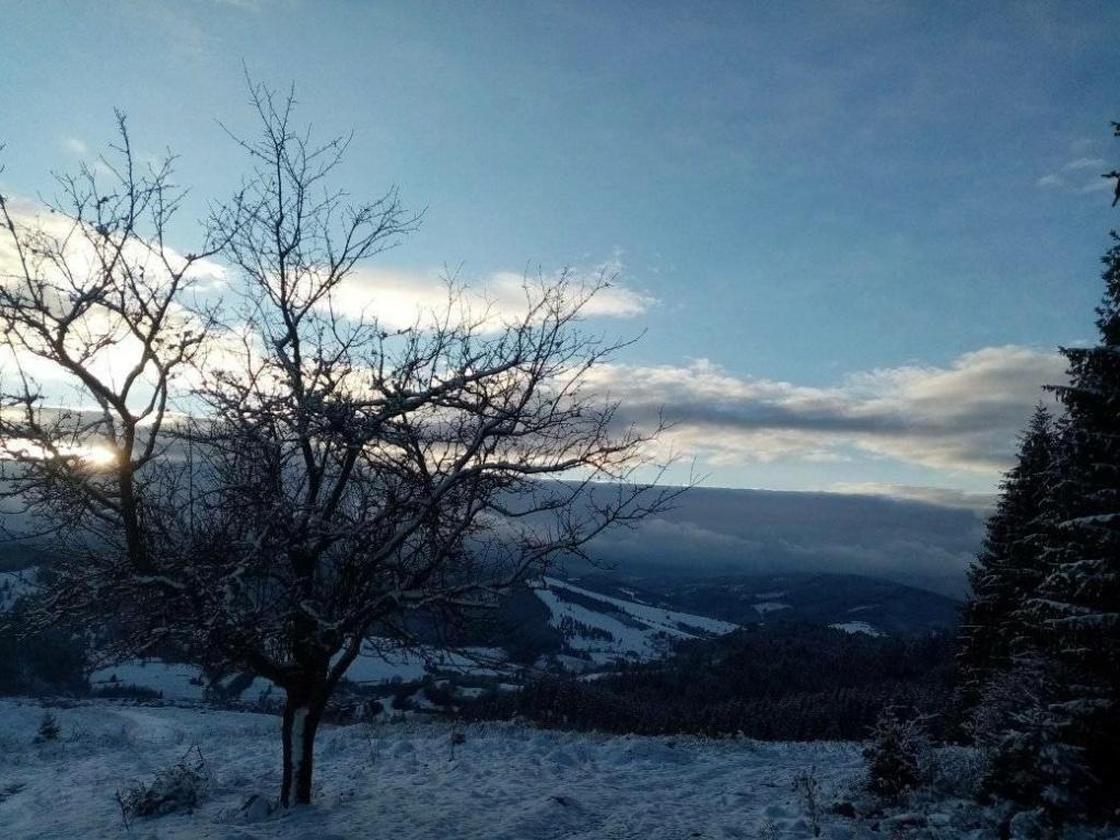 Zimná príroda 13633510