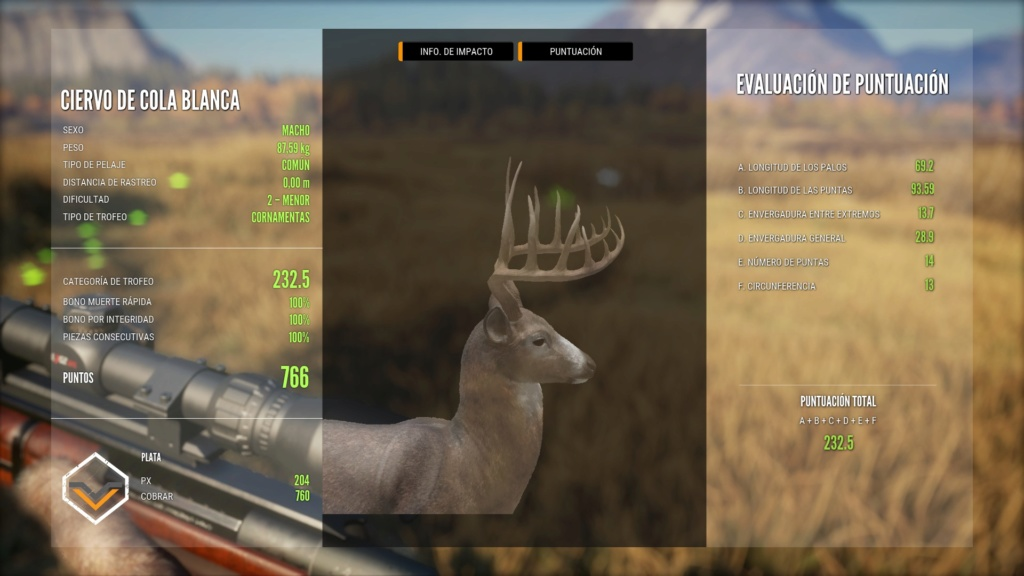 TOP 5 WHITETAIL 20190815