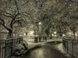 White Angel Park - Centro da Cidade White_13