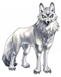 **SOLO UN OMEGA** Wolf_f10