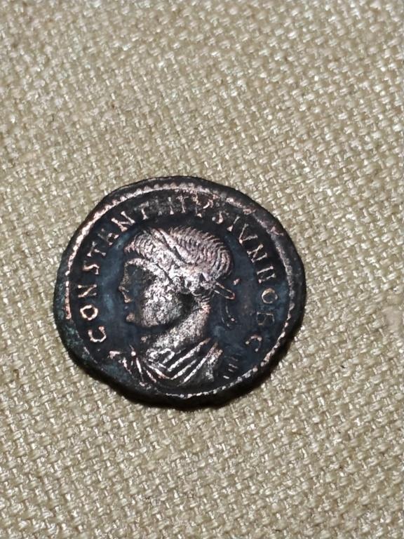 AE3 de Constantino II como cesar. PROVIDENTIAE CAESS. Puerta de campamento. Arlés Img_2059