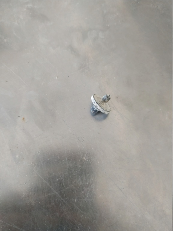 Soporte de la zapatilla de un grifo Img_2190
