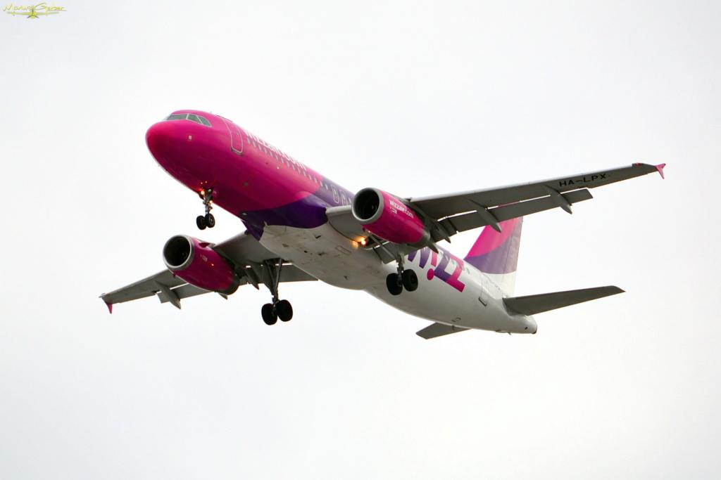 Aeroportul Iasi - Ianuarie 2019  Dsc_5310