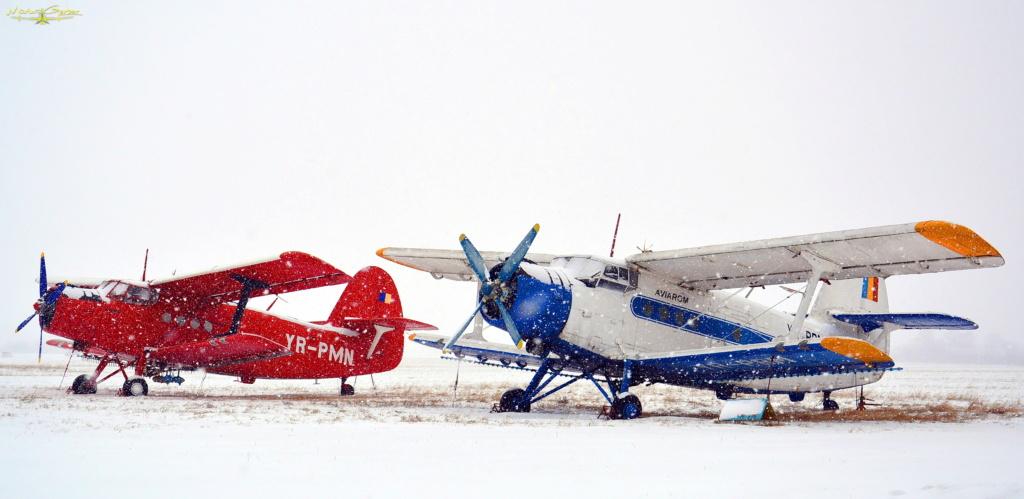 Aeroportul Iasi - Ianuarie 2019  Dsc_5413