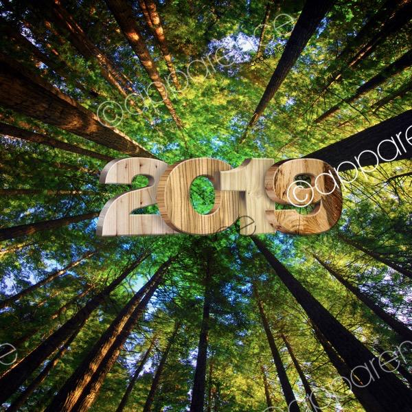 bonne année à tous - Page 2 Voeux210