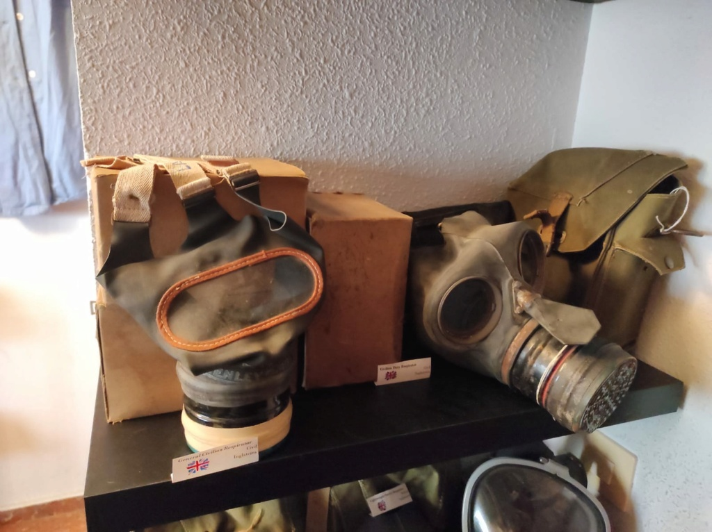 Des masques a gaz Whatsa37