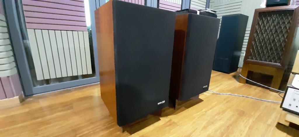 Pioneer hpm 100 speaker 20200110