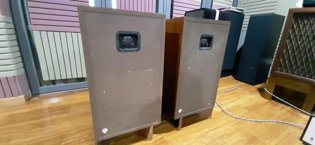 Pioneer hpm 100 speaker 20200111