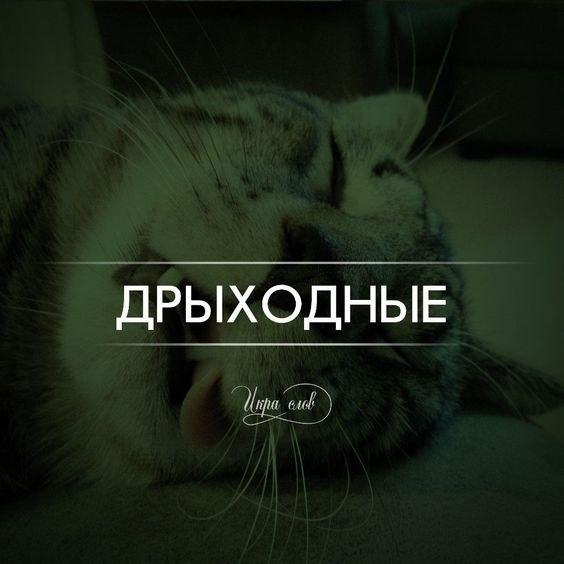 Болталка -3 - Страница 3 _ru12w10