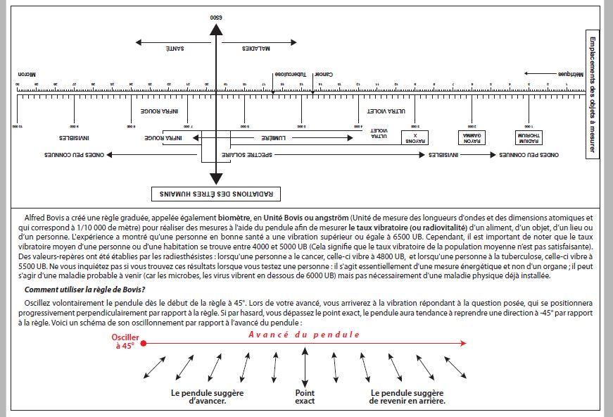 Biomètre et règle Bovis à faire soit même Regle_10