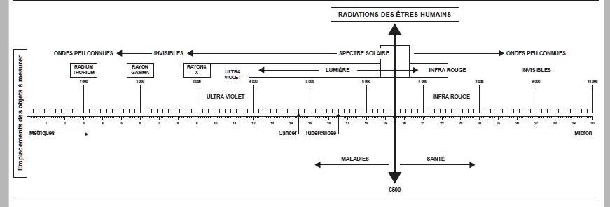 Biomètre et règle Bovis à faire soit même Regle_11