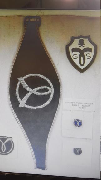 Identification d'un insigne G.S.S Milice 20200227