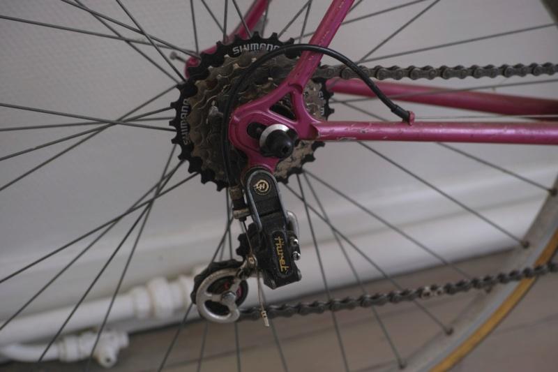 Cybreta, un vélo Nantais et un cadreur mystère Dp2m5715