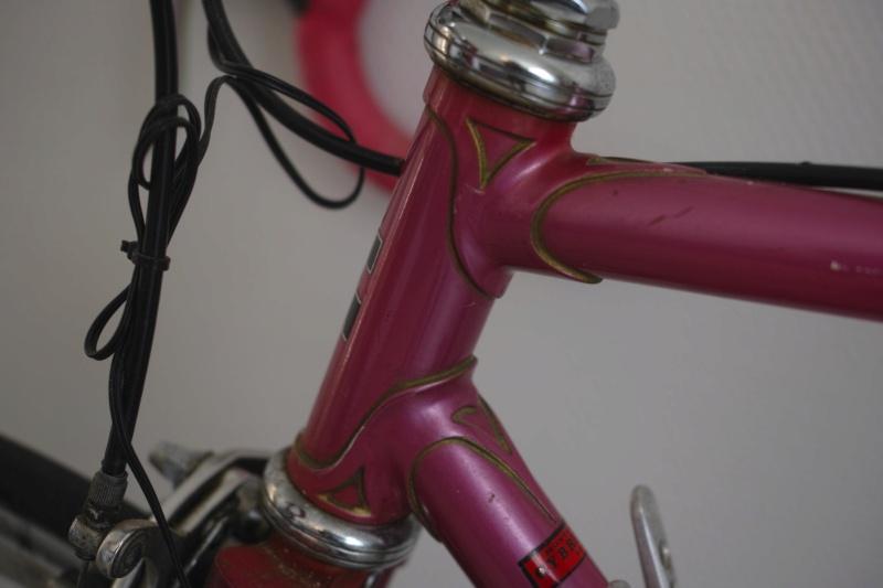Cybreta, un vélo Nantais et un cadreur mystère Dp2m5720
