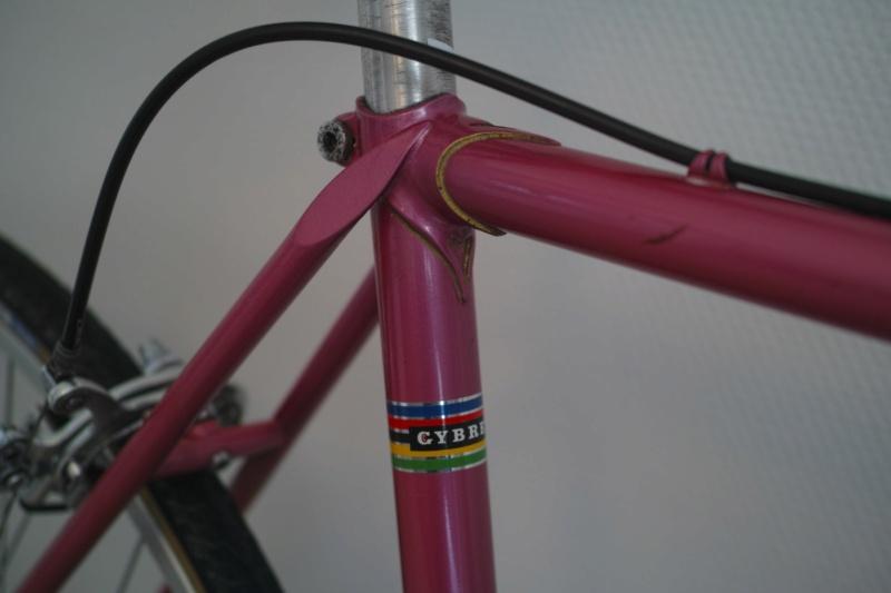 Cybreta, un vélo Nantais et un cadreur mystère - Page 2 Dp2m5723