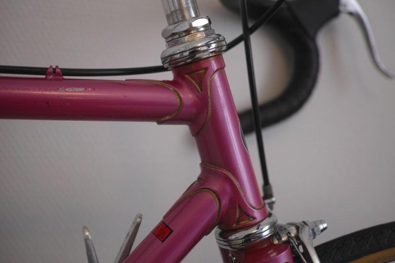 Cybreta, un vélo Nantais et un cadreur mystère - Page 2 Dp2m5724