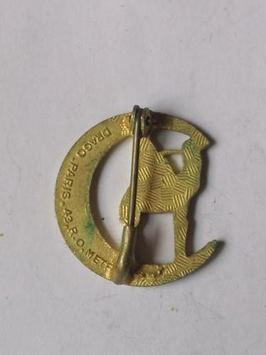 Quelques insignes à identifier _copi186