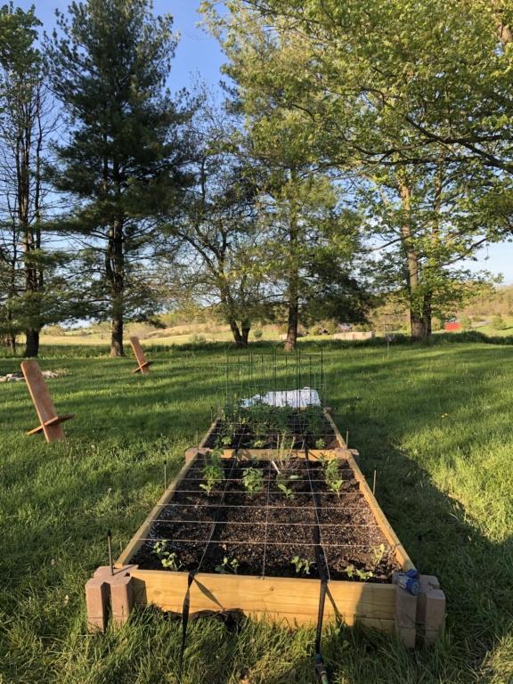 Virginia Shenandoah SQFT Garden 5/5/20 Img_1511