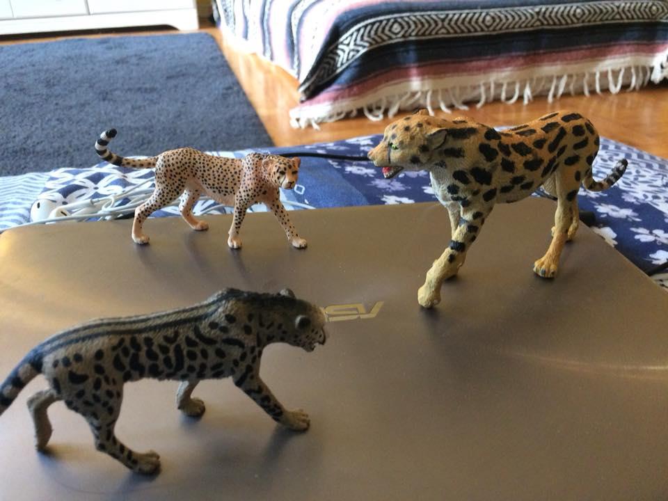Extinct Giant Cheetah Img211