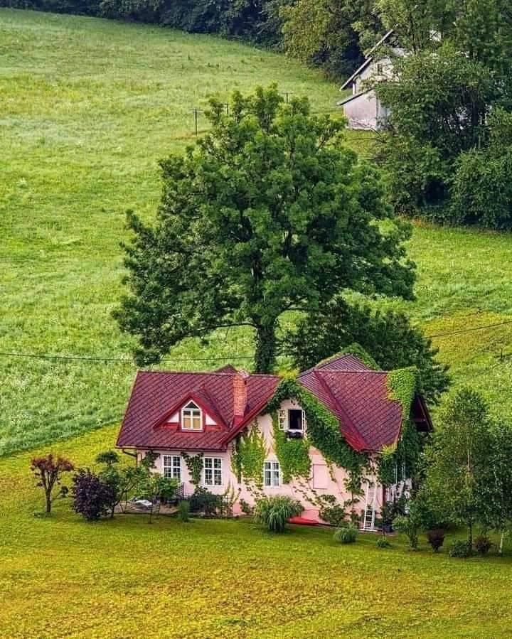 kuće koje nam se sviđaju.. - Page 5 Fb_im250