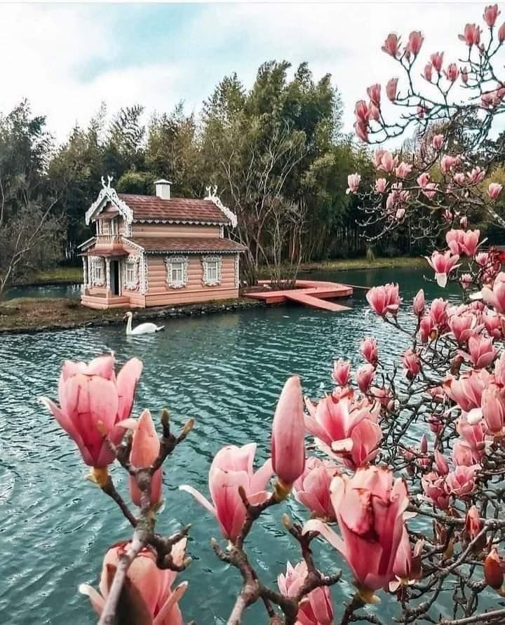 kuće koje nam se sviđaju.. - Page 5 Fb_im336