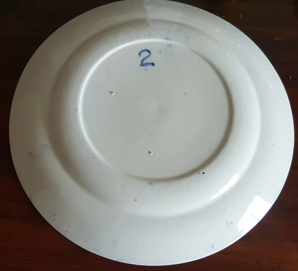 Unknown Willow Plate 20210622