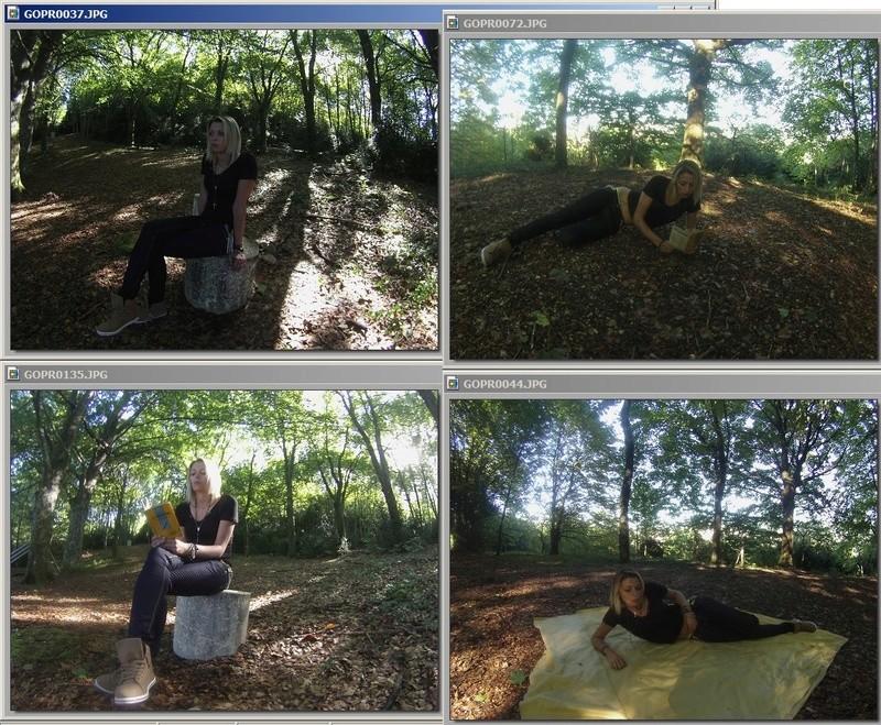"""Manet Edouard, """"Le déjeuner sur l'herbe"""" - Page 2 Allyss10"""