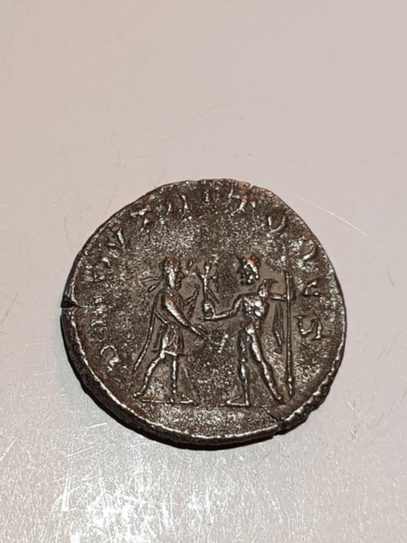 Antoniniano de Salonino. DII NVTRITORES. Antioquía  15183611