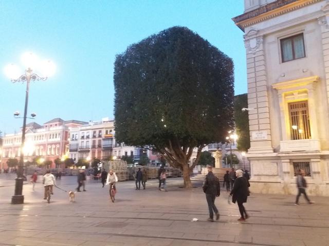 [ESSAI] Compte Rendu de l'Essai du MICHELIN ROAD 5 en Andalousie(ESPAGNE) 20180270