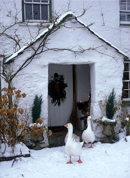 Photos d'hiver  - Page 3 0d062110